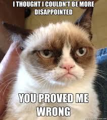 grumpycatproved wrong