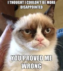 grumpycatproved wrong